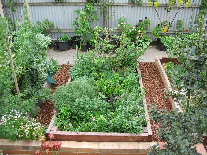 Raised garden beds deep green permaculture for Vegetable garden bed design