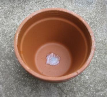 Self Watering Tray_04