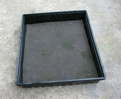 Self Watering Tray Deep Green Permaculture