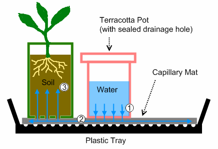 Watering Tray Schematic2
