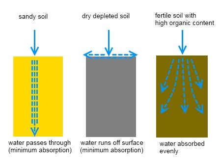 How to build a french drain deep green permaculture for Soil drainage system