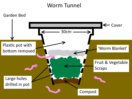 Build a Worm Tunnel Vermicomposting System | Deep Green