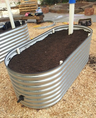 Wicking Bed Container Garden