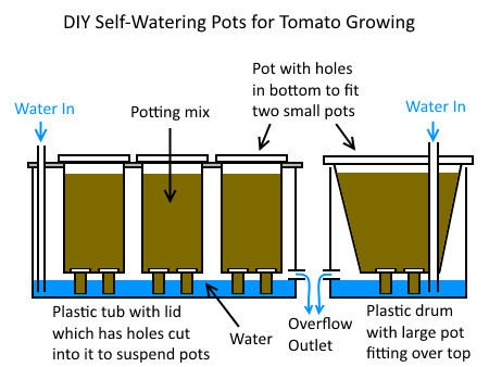 Diy Self Watering Pots And Mini Wicking Beds Deep Green