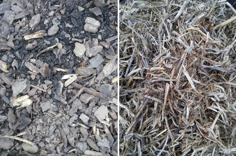 garden-mulches.jpg