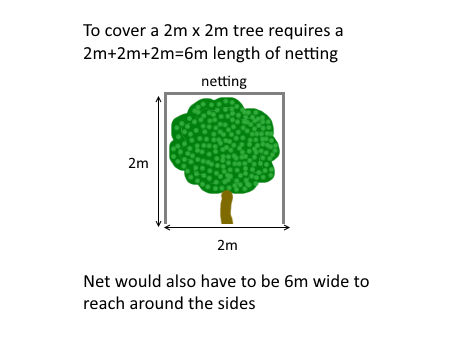 Product Review Ryset Tree Cover Formed Insect Net