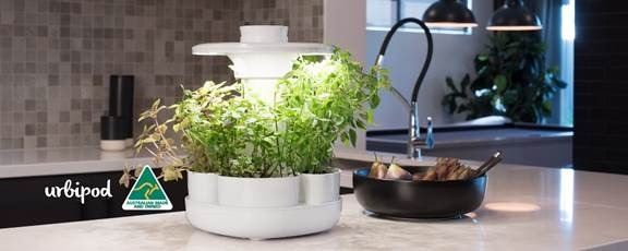 Product Review – UrbiPod, Indoor Kitchen Food Growing Made Easy