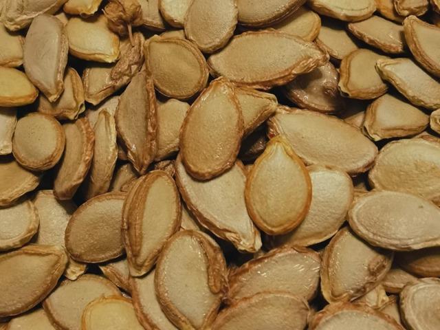 Seed Saving – How Long Can You Keep Seeds?